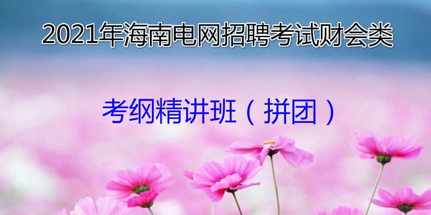 2021年海南电网招聘考试财会类考纲精讲班(拼团)