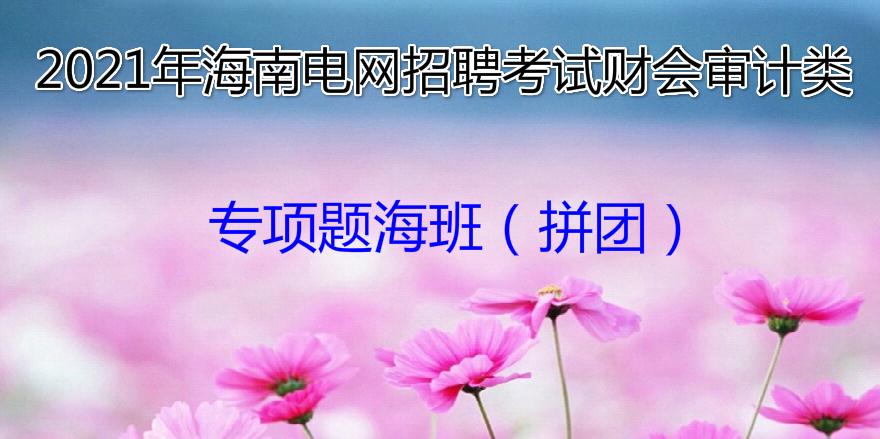 2021年海南电网招聘考试财会审计类专项题海班(拼团)