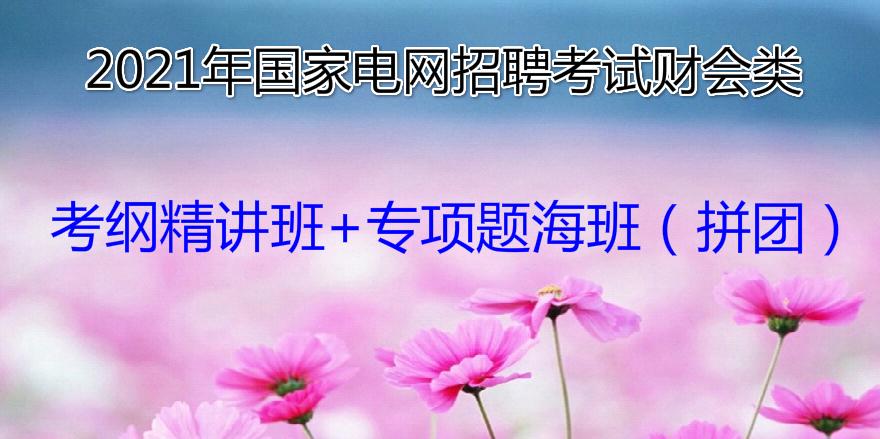 2021年国家电网招聘考试财会类考纲精讲班+专项题海班(拼团)